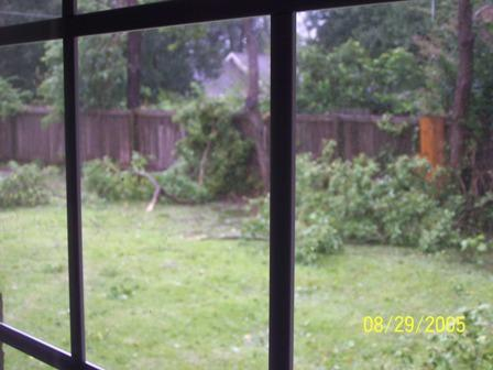 My backyard during Katrina.JPG