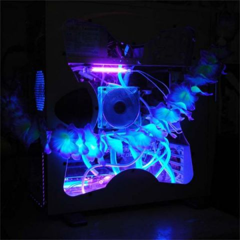 UV Box Lei-d